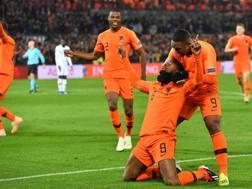 Georginio Wijnaldum festeggia l'1-0 dell'Olanda. Getty