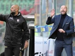 Roberto Stellone, allenatore del Palermo, e Christian Bucchi, tecnico del Benevento. Lapresse