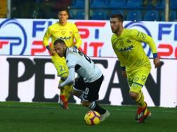 Una fase di gioco di Parma-Chievo. Lapresse