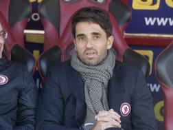Gianluca Grassadonia, per lui fatale la sconfitta di Livorno. LaPresse