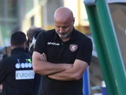 Stefano Colantuono, 56 anni. Lapresse