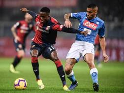 Christian Kouamé contrastato da Allan in Genoa-Napoli. Afp