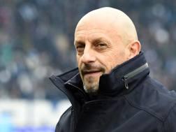 Domenico Di Carlo, allenatore del Chievo. Getty