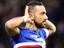 Fabio Quagliarella esulta dopo l'8° gol consecutivo in campionato, LaPresse