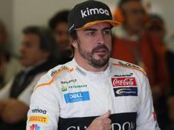 Fernando Alonso, 37 anni. Lapresse