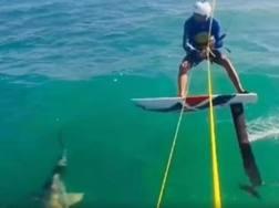 Alex Soto prima dell'impatto con lo squalo