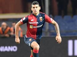 Cristian Romero, 20 anni, al primo anno al Genoa. LaPresse
