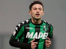 Stefano Sensi, 23 anni, centrocampista del Sassuolo. Getty