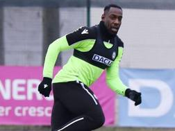 Stefano Okaka, nuovo attaccante dell'Udinese. Twitter Udinese