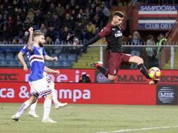 Il bel gol dell'1-0 di Patrick Cutrone. Lapresse