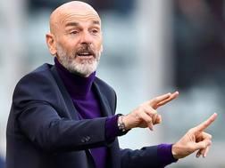 Stefano Pioli, tecnico della Fiorentina. Getty