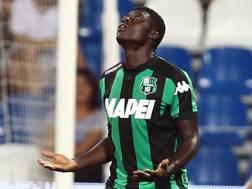 Alfred Duncan, 25 anni, quarta stagione al Sassuolo. Lapresse