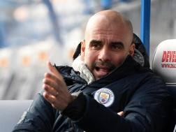 Pep Guardiola, allenatore del Manchester City. GETTY