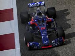 La Toro Rosso di Kvyat nei test di Abu Dhabi 2018. Getty