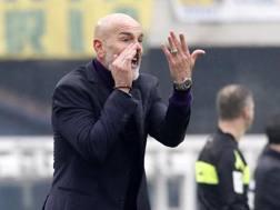 Stefano Pioli, 53 anni. Lapresse