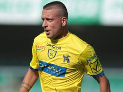 Emanuele Giaccherini, 33 anni. Getty