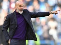 Stefano Pioli, 53 anni, allenatore della Fiorentina. Lapresse