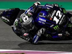 Maverick Vinales, 24 anni, Yamaha, quest'anno ha cambiato numero passando dal 25 al 12