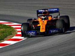 Lando Norris sulla McLaren. Getty