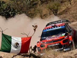 Sebastien Ogier nella sua Citroen durante la prima tappa del rally del Messico. Getty