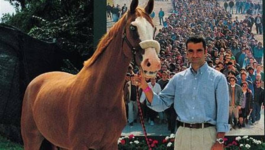 Equitazione, addio alla mitica Weihaiwej