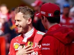 Sebastian Vettel, 31 anni, 4 volte iridato (2010-13) e Charles Leclerc, 21, al debutto con Maranello GETTY IMAGES