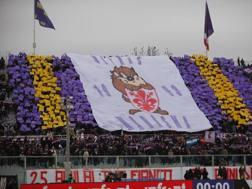 Lo stadio Artemio Franchi. LaPresse