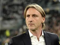 Davide Nicola, allenatore dell'Udinese. Getty
