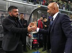 Rino Gattuso e Luciano Spalletti. Getty