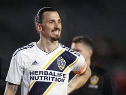 Zlatan Ibrahimovic, 37 anni. Afp