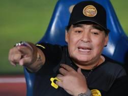 Diego Armando Maradona. Getty