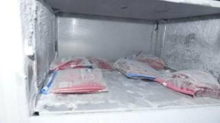 Alcune sacche di sangue ritrovate nel freezer del medico indagato