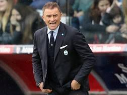 Leonardo Semplici, 51 anni. Getty