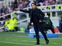 Vincenzo Montella al ritorno sulla panchina viola. LaPresse