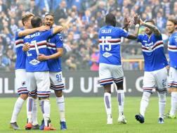 Defrel festeggiato dai compagni dopo il gol dell'1-0. Lapresse