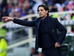 Vincenzo Montella, 44 anni. LaPresse