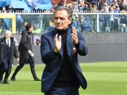 Cesare Prandelli, Lapresse