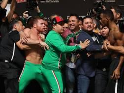 Il messicano Saul Canelo Alvarez (a sinistra) e l'americano Daniel Jacobs sfiorano la rissa al peso. Afp