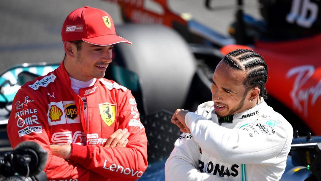 Il 2020 sarà l'anno della sfida Hamilton-Leclerc? AFP