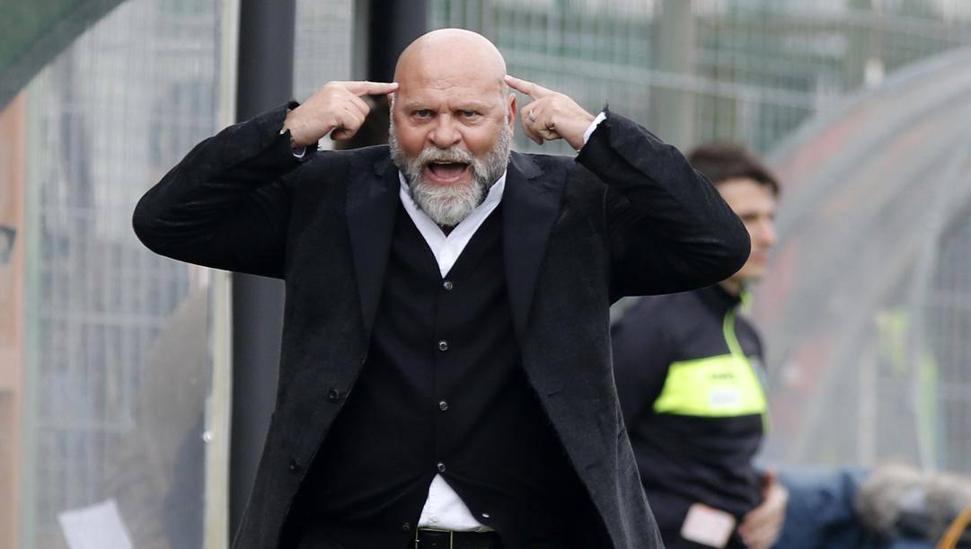 Cosmi, allenatore del Perugia. Lapresse