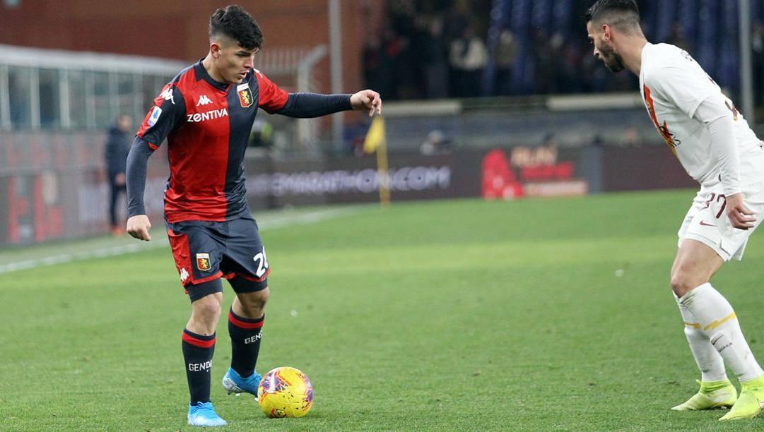 Kevin Agudelo, passato a gennaio dal Genoa alla Fiorentina. Lapresse