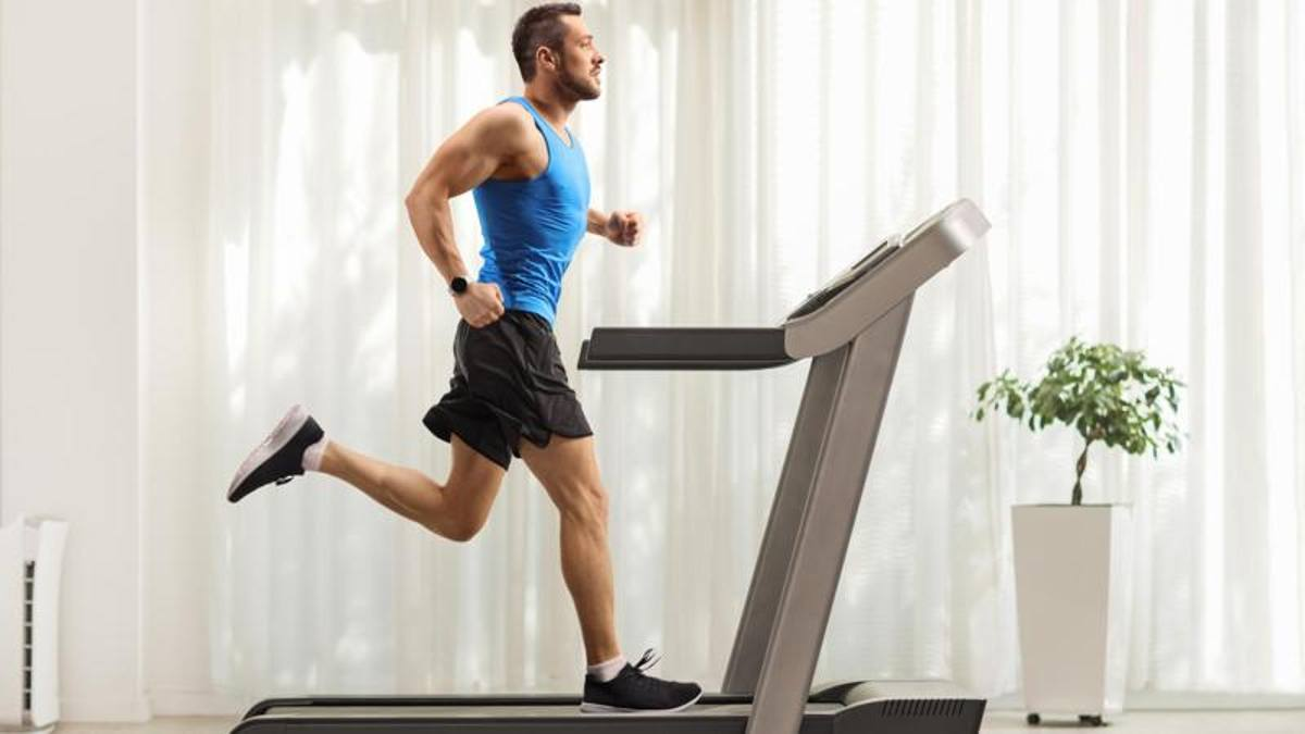 Workout: what is the best time to train? A study reveals the right stages  for sport - Archyde