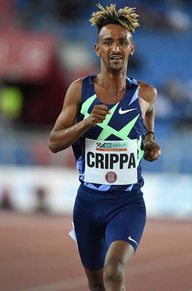 Yemen Crippa