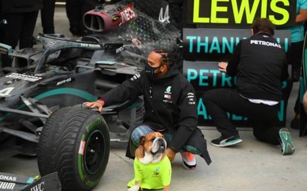 Lewis Hamilton con l'amata Mercedes e il fidato Roscoe. Getty