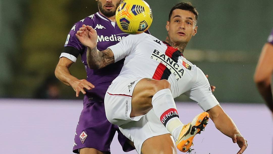Gianluca Scamacca, 21 anni. Getty