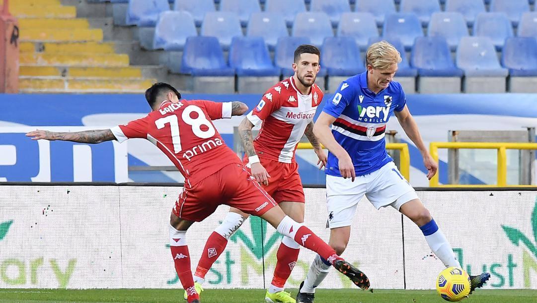 Erick Thorsby, spina nel fianco della Fiorentina. Lapresse