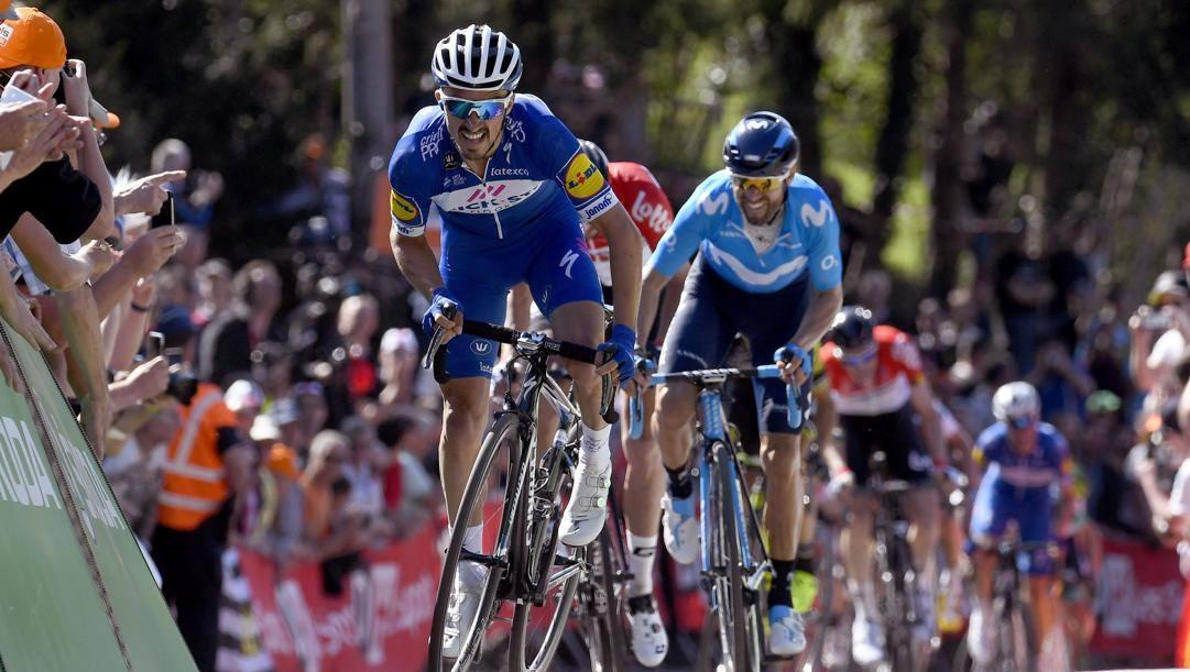 Alaphilippe e Valverde nel 2019. Bettini